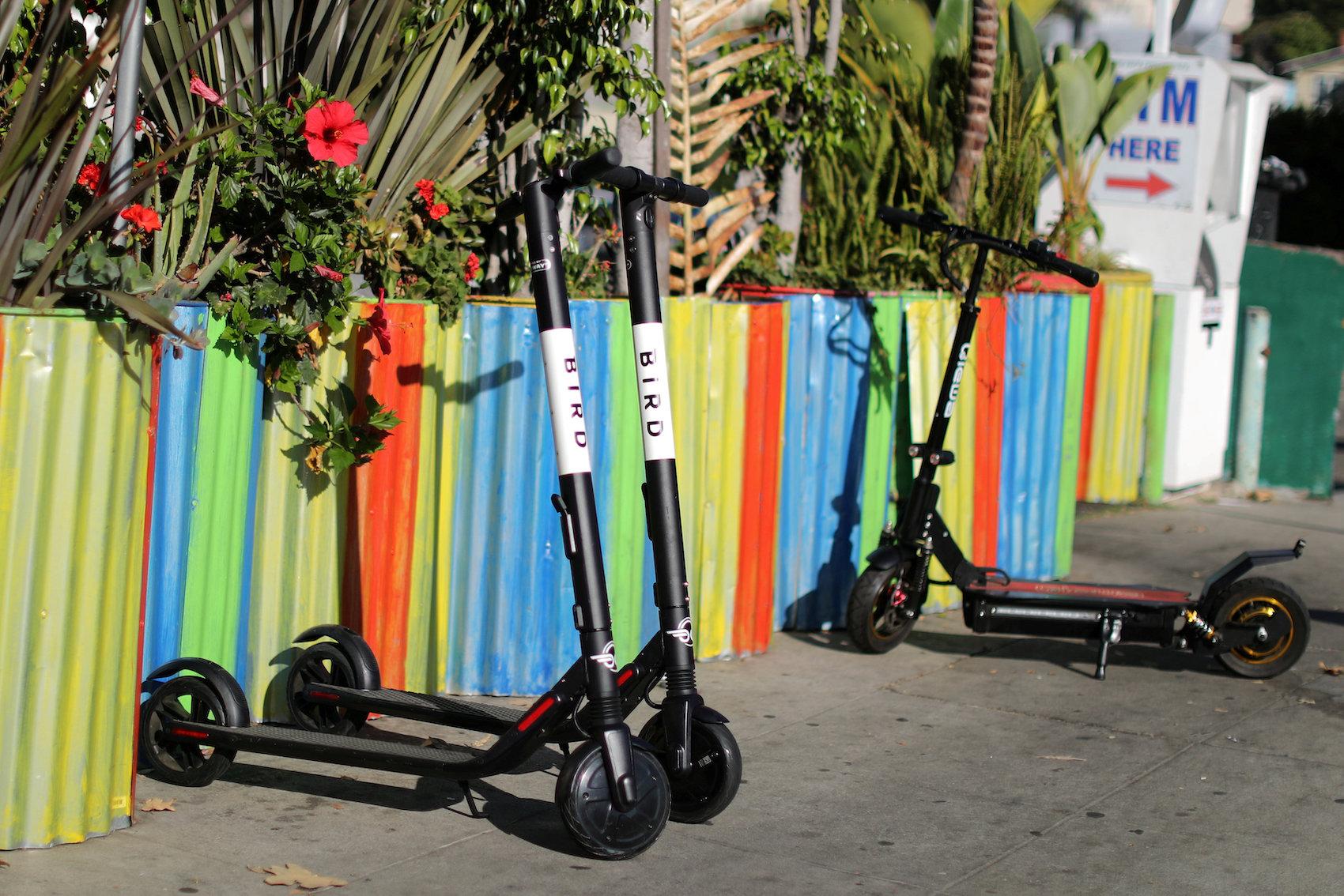 Bird-Trotinette warten in Santa Monica (USA) auf ihren Einsatz. (Reuters/Lucy Nicholson)